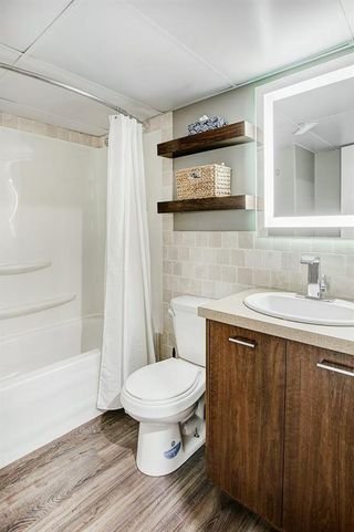 Photo 26: 9315 ALMOND Crescent SE in Calgary: Acadia Detached for sale : MLS®# C4268253