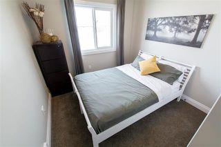 Photo 12: 3614 8 AV SW in Edmonton: Zone 53 Attached Home for sale : MLS®# E4183728