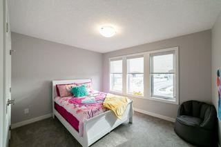 Photo 20: 6 Edison Drive: St. Albert House for sale : MLS®# E4190204