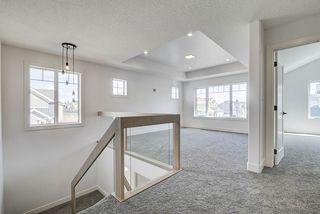 Photo 22: 8927 20 Avenue in Edmonton: Zone 53 House for sale : MLS®# E4203196