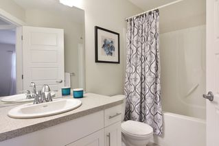 Photo 13: 21091 79A AVENUE in Langley: Willoughby Heights Condo for sale : MLS®# R2120936
