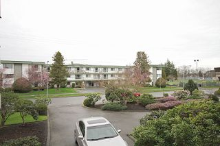 Photo 6: 106 - 20460 54 Ave in Langley: Langley City Condo for sale : MLS®# R2041657