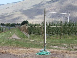 Photo 10: LOT 12 OSPREY Lane: Keremeos Agriculture for sale