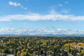 Photo 10: 2004 8880 HORTON Road SW in Calgary: Haysboro Apartment for sale : MLS®# A1036069
