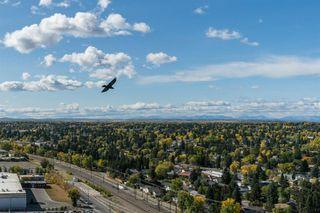 Photo 8: 2004 8880 HORTON Road SW in Calgary: Haysboro Apartment for sale : MLS®# A1036069