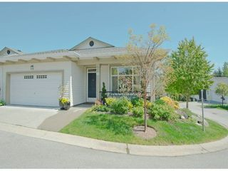 Photo 1: 24 15188 62A Ave in Surrey: Sullivan Station Home for sale ()  : MLS®# F1311205