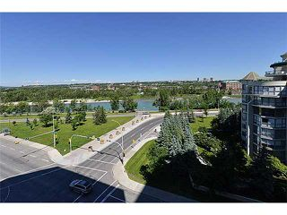 Photo 11: 802 1121 6 Avenue SW in CALGARY: Downtown West End Condo for sale (Calgary)  : MLS®# C3626041