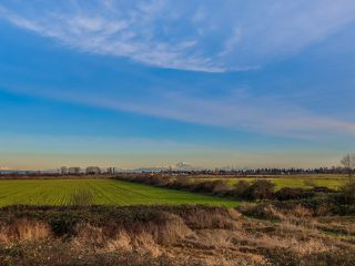 Photo 20: 619 SANDOLLAR PLACE in Delta: Tsawwassen East House for sale (Tsawwassen)  : MLS®# R2022171