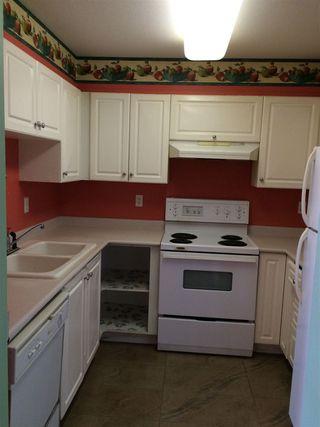 Photo 13: 206 8110 120A STREET in Surrey: Queen Mary Park Surrey Condo for sale : MLS®# R2100289