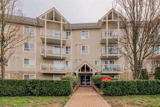 Photo 1: 206 8110 120A STREET in Surrey: Queen Mary Park Surrey Condo for sale : MLS®# R2100289
