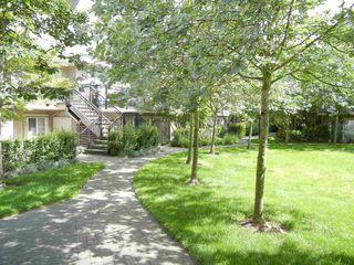 Photo 3: 92 9339 ALBERTA ROAD in Richmond: McLennan North Condo for sale : MLS®# R2077400