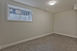 Photo 28: 13006 66 Avenue NW in Edmonton: Zone 15 House for sale : MLS®# E4173398