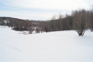 Photo 5: 9 53319 RGE RD 14: Rural Parkland County Rural Land/Vacant Lot for sale : MLS®# E4192115