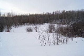 Photo 10: 9 53319 RGE RD 14: Rural Parkland County Rural Land/Vacant Lot for sale : MLS®# E4192115