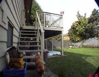 "Photo 8: 11825 WARREN PL in Delta: Annieville House for sale in ""Kennedy West"" (N. Delta)  : MLS®# F2606720"