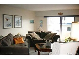 Photo 3: 303 1325 Harrison Street in VICTORIA: Vi Downtown Condo Apartment for sale (Victoria)  : MLS®# 186412