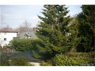 Photo 9: 303 1325 Harrison Street in VICTORIA: Vi Downtown Condo Apartment for sale (Victoria)  : MLS®# 186412