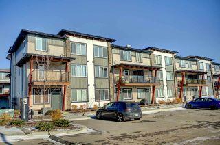 Photo 23: 49 446 ALLARD Boulevard in Edmonton: Zone 55 Townhouse for sale : MLS®# E4178617