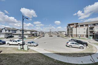 Photo 19: 240 1520 Hammond Gate NW in Edmonton: Condo for sale
