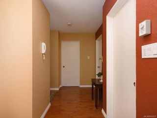 Photo 11: 202 415 Linden Ave in Victoria: Vi Fairfield West Condo for sale : MLS®# 845023