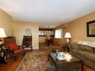 Photo 4: 202 415 Linden Ave in Victoria: Vi Fairfield West Condo for sale : MLS®# 845023