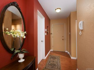 Photo 10: 202 415 Linden Ave in Victoria: Vi Fairfield West Condo for sale : MLS®# 845023
