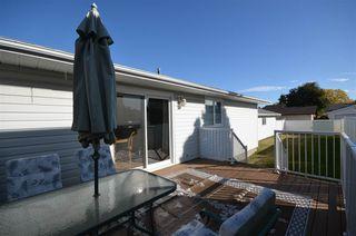 Photo 41: 1751 62 Street Edmonton 4 Bed 2.5 Bath Family House For Sale E4216829