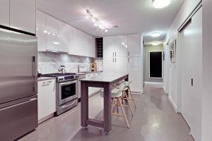 Photo 10: 203 231 E Pender Street in Vancouver: Downtown VE Condo for sale (Vancouver East)
