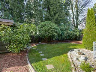 Photo 19: 19566 PARK ROAD in Pitt Meadows: Mid Meadows House for sale : MLS®# R2047749