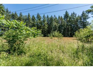 Photo 11: 25485 48 AVENUE in Langley: Salmon River House for sale : MLS®# R2185591