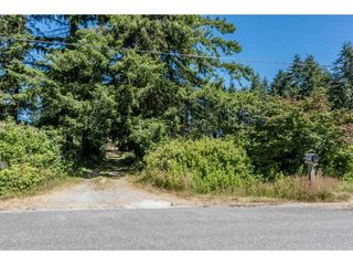 Photo 13: 25485 48 AVENUE in Langley: Salmon River House for sale : MLS®# R2185591