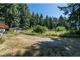 Photo 3: 25485 48 AVENUE in Langley: Salmon River House for sale : MLS®# R2185591