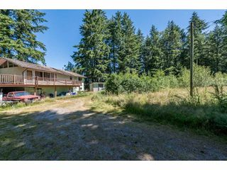 Photo 4: 25485 48 AVENUE in Langley: Salmon River House for sale : MLS®# R2185591