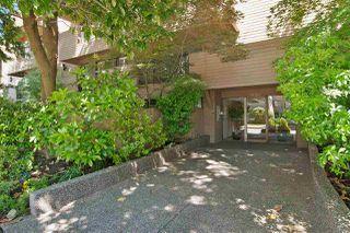 Main Photo: 208 1450 LABURNUM STREET in Vancouver: Kitsilano Condo for sale (Vancouver West)  : MLS®# R2338337