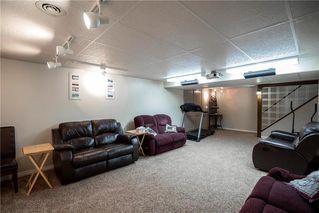 Photo 17: 46 Frederick Avenue in Winnipeg: St Vital Residential for sale (2D)  : MLS®# 202010236