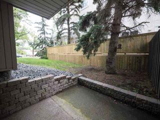 Photo 1:  in Edmonton: Zone 15 Condo for sale