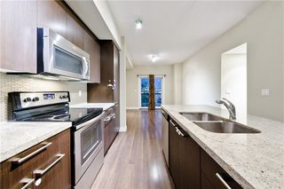Photo 22: 333 SILVERADO CM SW in Calgary: Silverado House for sale : MLS®# C4199284