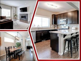 Main Photo: 163 MAHOGANY Grove SE in Calgary: Mahogany Detached for sale : MLS®# C4302402