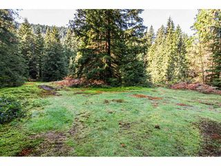 Photo 34: 12807 STAVE LAKE Road in Mission: Durieu House for sale : MLS®# R2472804