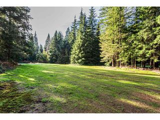 Photo 35: 12807 STAVE LAKE Road in Mission: Durieu House for sale : MLS®# R2472804