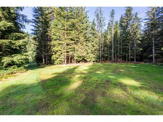 Photo 33: 12807 STAVE LAKE Road in Mission: Durieu House for sale : MLS®# R2472804