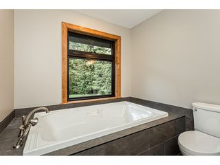 Photo 19: 12807 STAVE LAKE Road in Mission: Durieu House for sale : MLS®# R2472804