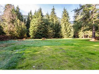 Photo 32: 12807 STAVE LAKE Road in Mission: Durieu House for sale : MLS®# R2472804
