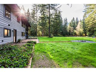 Photo 31: 12807 STAVE LAKE Road in Mission: Durieu House for sale : MLS®# R2472804