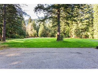 Photo 36: 12807 STAVE LAKE Road in Mission: Durieu House for sale : MLS®# R2472804