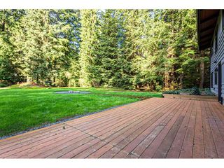 Photo 28: 12807 STAVE LAKE Road in Mission: Durieu House for sale : MLS®# R2472804