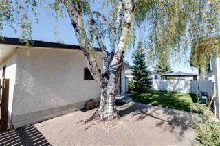 Photo 36: 3516 106 Street in Edmonton: Zone 16 House for sale : MLS®# E4213927