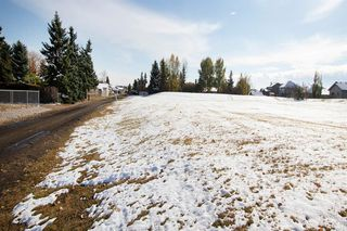 Photo 37: 633 Wallace Drive: Carstairs Detached for sale : MLS®# A1042129