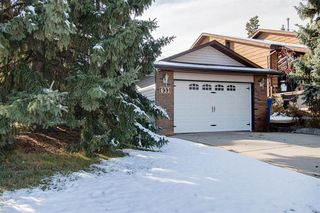Photo 39: 633 Wallace Drive: Carstairs Detached for sale : MLS®# A1042129