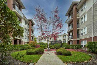 "Photo 2: 217 20259 MICHAUD Crescent in Langley: Langley City Condo for sale in ""City Grande"" : MLS®# R2515999"